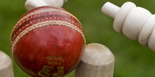 cricket-stumps
